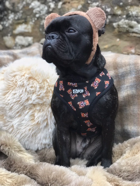 Electric Ted Reversible Harness