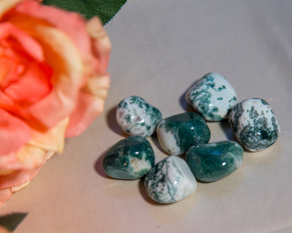 Moss Agate Tumbles for Gaia Consciousness - The Crystal Cavern