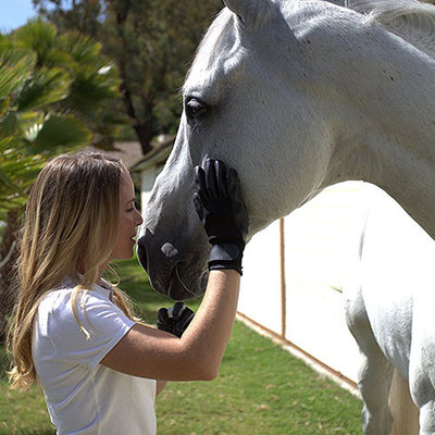 GeniusSo - Silicone Grooming Black Elegant Gloves for Horses