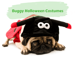 Buggy Halloween Costumes