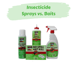 Insecticide Sprays vs. Baits