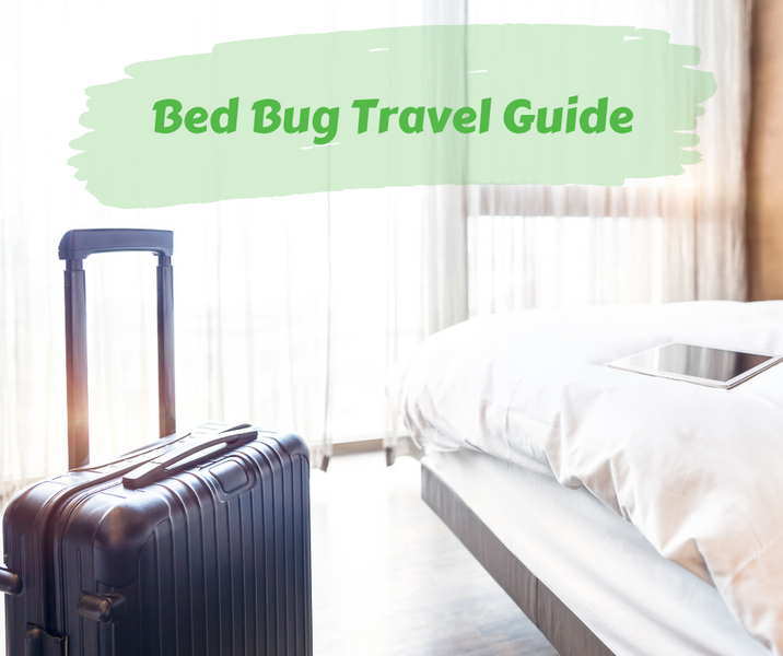 Bed Bug Travel Guide