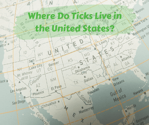 Where Do Ticks Live in the United States?