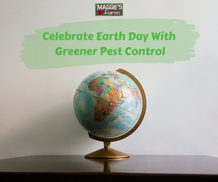 Celebrate Earth Day With Greener Pest Control