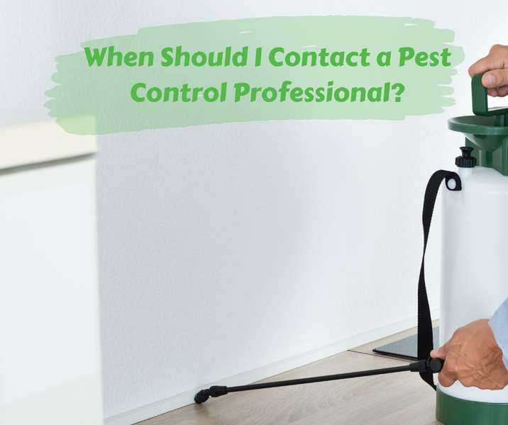 When Should I Contact a Pest Control Professional?