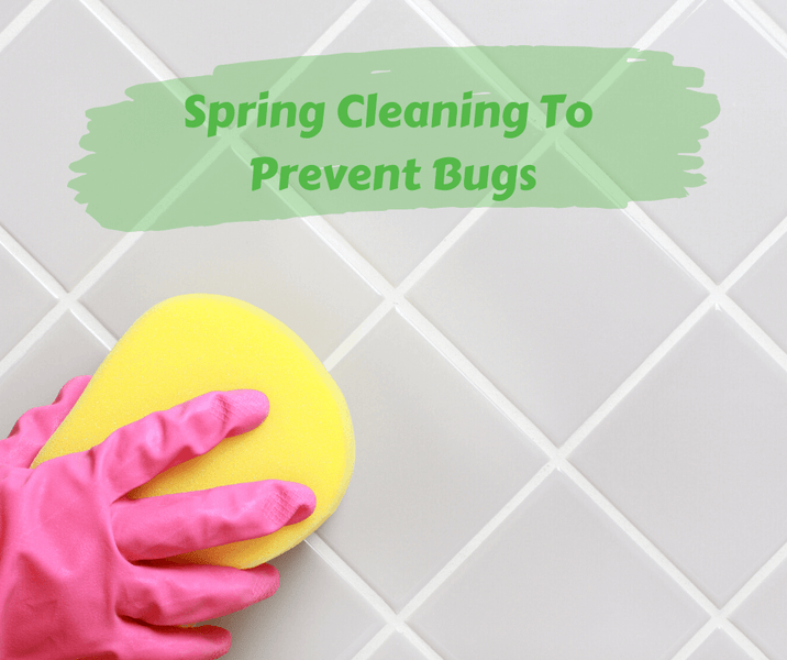 Spring Cleaning To Prevent Bugs