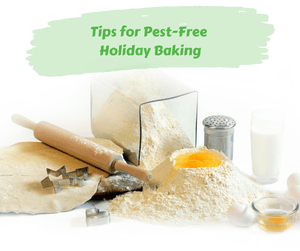 Tips for Pest-Free Holiday Baking