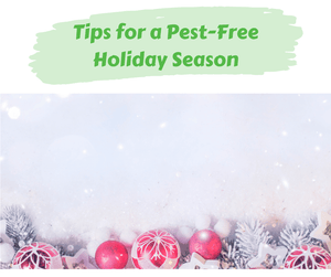 Tips for a Pest-Free Holiday Season
