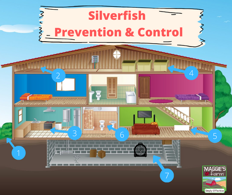 Silverfish prevention & control