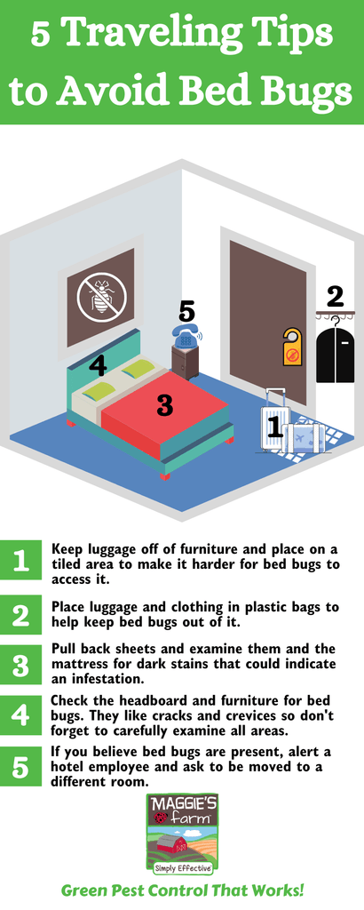 5 Travelling Tips to Avoid Bed Bugs Infographic