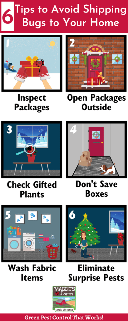 6 Tips to Avoid Shipping Bugs to Your Home Infographic