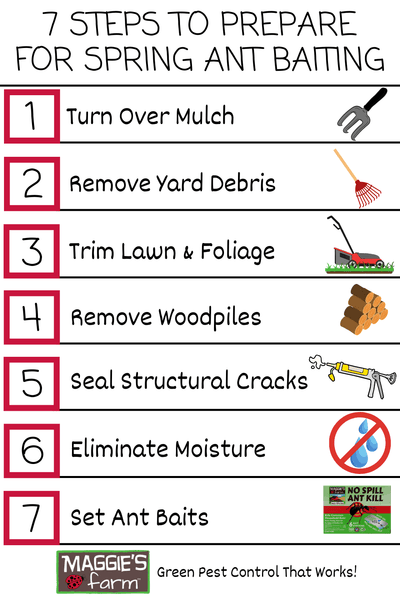 7 Steps to Prepare for Spring Ant Baiting Infographic