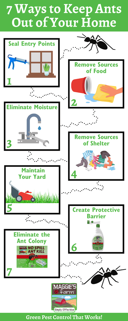 7 Ways to Keep Ants Out of Your Home Infographic