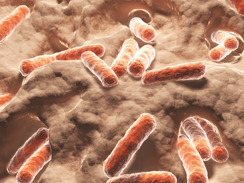 Abamectin: Derived From Soil Microbes