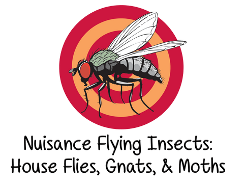 Nuisance Flying Insects: House Flies, Gnats, & Moths