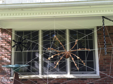 Halloween spider decoration