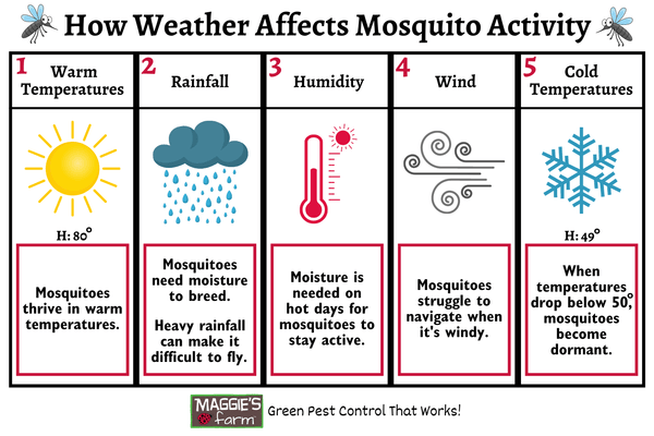 How Weather Affects Mosquito Activity infographic