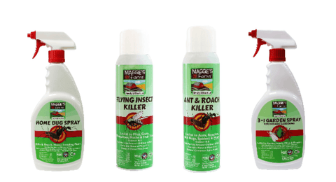 Best Indoor Pest Control Solutions