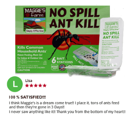 No Spill Ant Kill Review