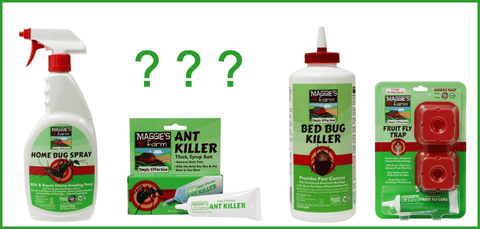 Best Pest Control Products