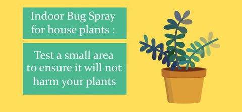 Indoor Bug Spray