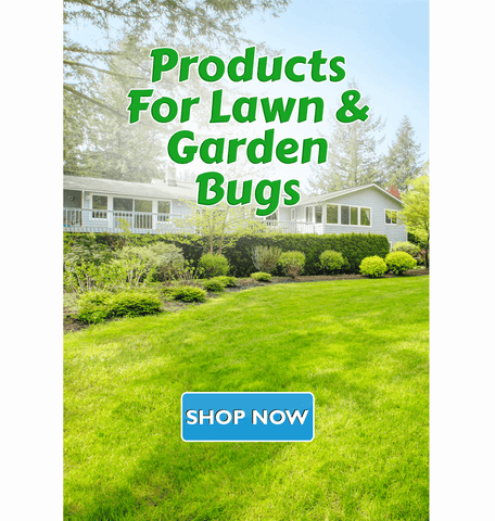 Bug Control Products for Lawn