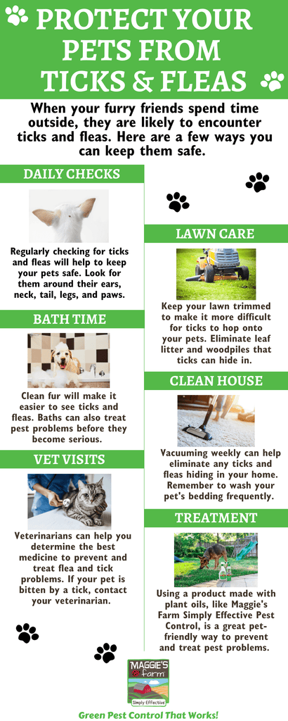 Protecting Pets from Ticks and Fleas Infographic