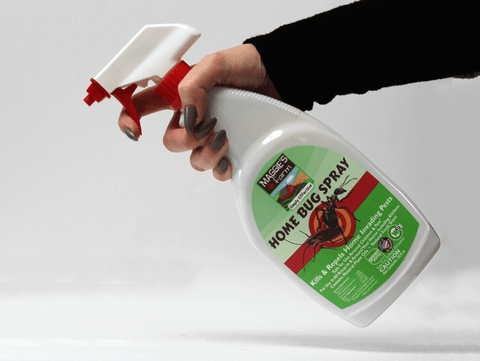 Best Home Bugs Spray