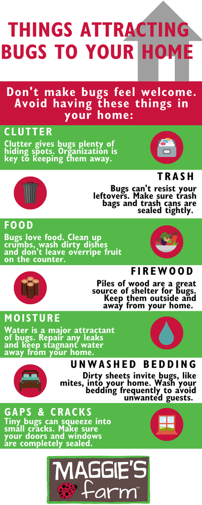 Attracting Bugs Infographic