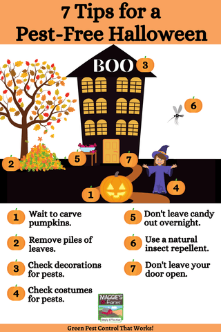 Tips for a Pest-Free Halloween Infographic