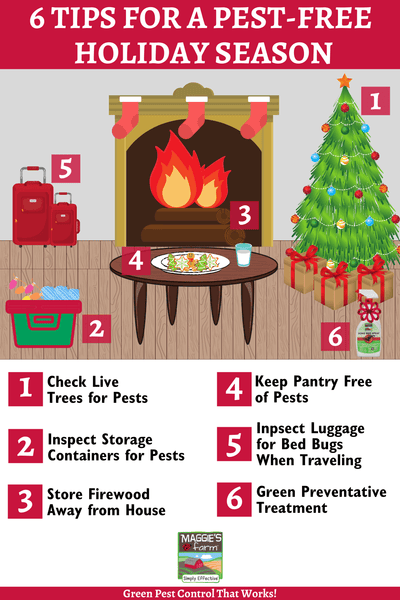 Tips for a Pest-Free Holiday Season infographic