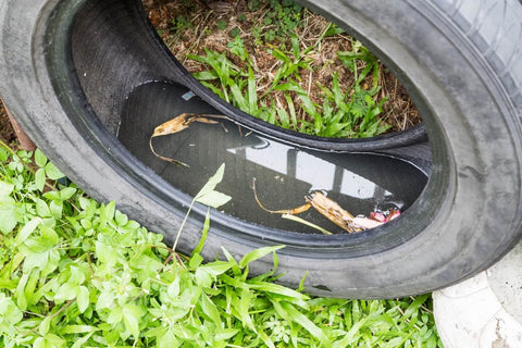 Water in Tire