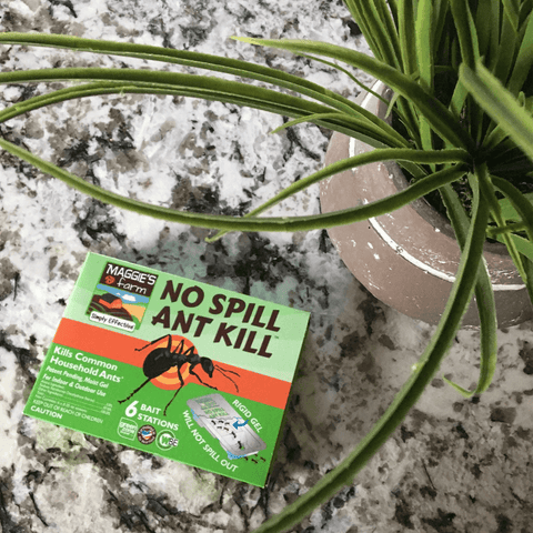 Maggie's Farm No Spill Ant Kill Bait Stations