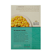 Ancient Harvest Gluten Free Pasta Shells, 8 Ounce - Buy Fast delivery