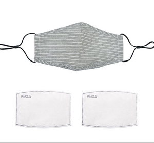 Grey Stripe Face Mask with Filter