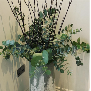 Pussy willow and eucalyptus combo ( vase not included)