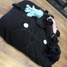 Black Pug Pillow