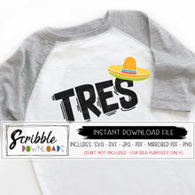 Tres Fiesta theme SVG sombrero maraca 3 three third 3rd birthday bday party SVG DXF PDF PNG JPG cricut silhouette vinyl cut file digital download printable iron on shirt clipart graphic vector 3 year old cute boy girl party popular free commercial use