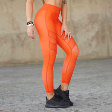 Leggings – Olympia