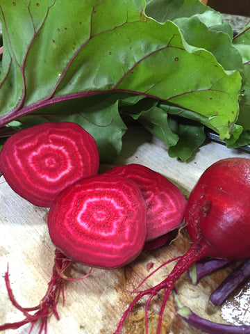 Healthy beets are easy to grow
