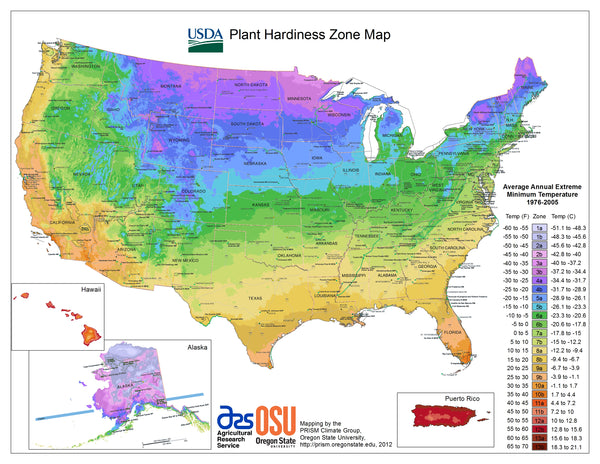 Plant hardiness map growing zones