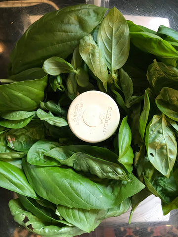 Basil in food processor for pesto
