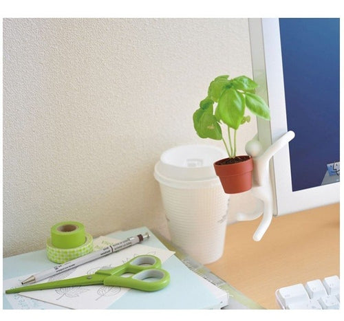 Desktop Gardening DIY Pot Plant