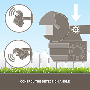 Motion Activated Sprinkler with Day and Night Detection