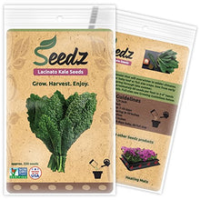 Organic Lacinato Kale Seeds (Approx. 550)