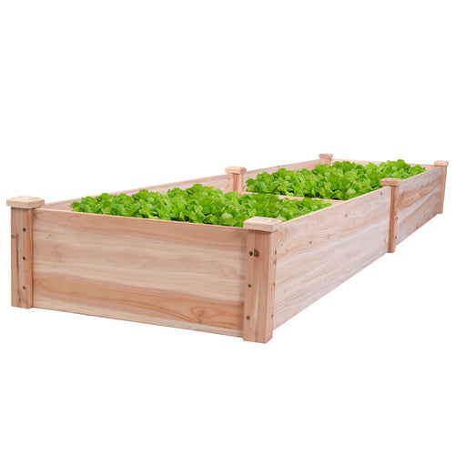 Cedar Raised Garden Bed Kit (8x2ft)