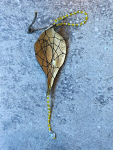 Dream Catcher Milkweed Seed Pod