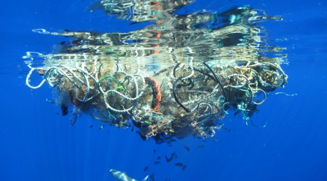 The Ocean is Drowning in Plastic. What Are Our Alternatives?