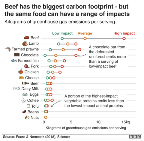 Carbon Emissions Food by Production Region RePrint Footprint Tracker