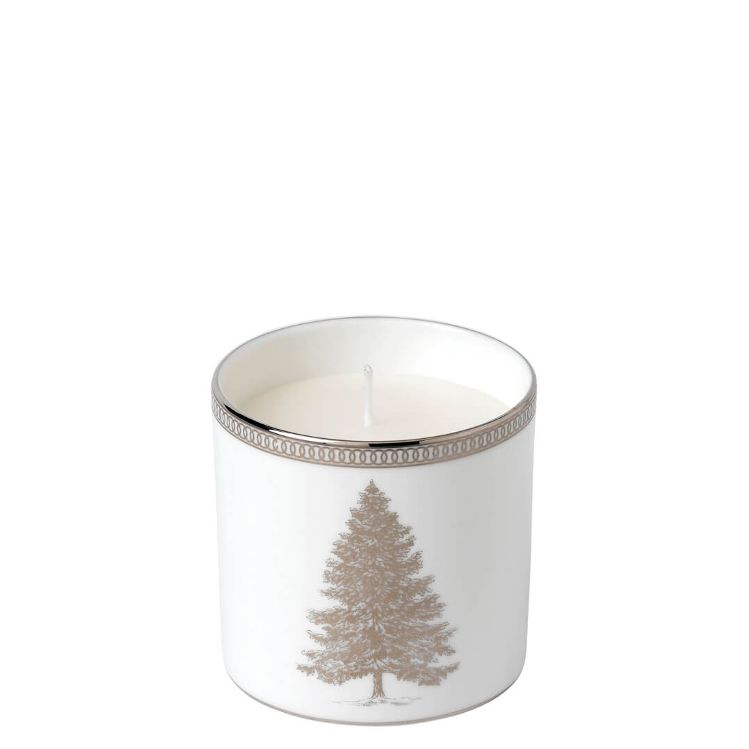 Winter White Festive Spices, Juniper & White Heather Filled Candle